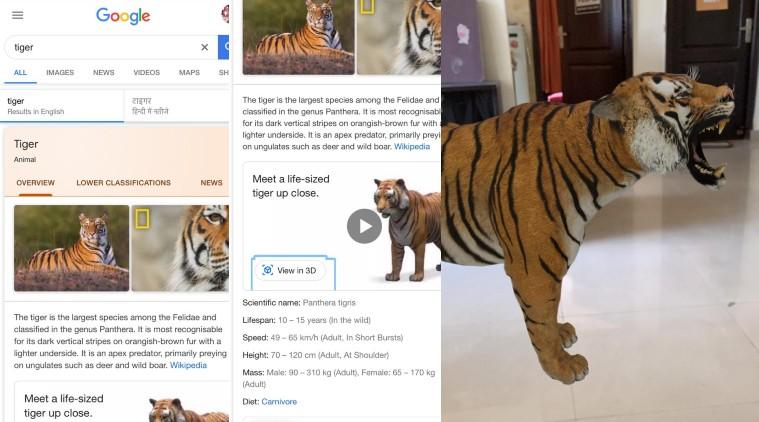 Google 3D Animals: अपने कमरे में AR बाघ, बत्तख, कुत्ते और अन्य जानवरों को कैसे देखें